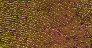 Rub al Khali Released 20/05/2016 10:00 am Copyright Contains modified Copernicus Sentinel data [2016], processed by ESA, CC BY-SA 3.0 IGO Photo: ESA