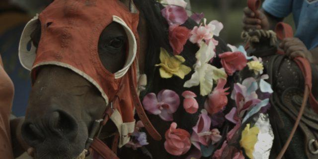 Mohamed Bourouissa: Horse Day, 2014  Film still. Courtesy the artist and kamel mennour, Paris © Mohamed Bourouissa