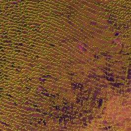 Rub al Khali Released 20/05/2016 10:00 am Copyright Contains modified Copernicus Sentinel data [2016], processed by ESA, CC BY-SA 3.0 IGO Photo: ESA